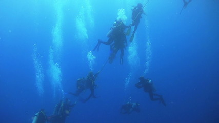 Group of Divers Preparing to Dive, Red sea