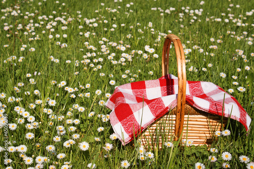 picnic basket - 65050359