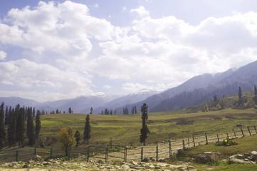 Beautiful view at Sonamarg Kashmir