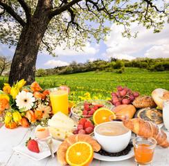 Frühstücken unter blühendem Baum :)