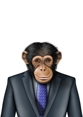 smartmonkey business isolated