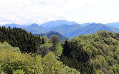 panorama dal sentiero per il Bolettone