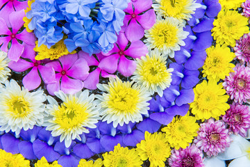 The variety flowers arragment for decoration