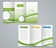 Three fold brochure template, corporate flyer or cover design in - 65063397