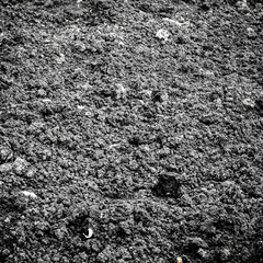 Black soil texture background