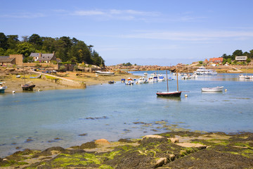 Harbor in Ploumanach, Brittany, France