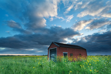 sunset sky over farmhouse on rapeseed field
