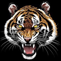 The Tiger Roar on Black Background