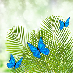 palm tree with butterflies