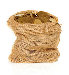 Bag of coins isolated