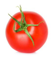 Tomato isolated
