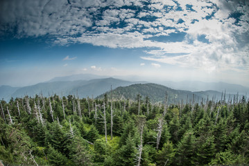 The Smokies from Clingman's Dome