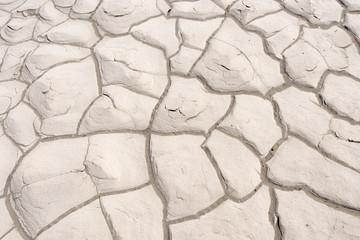 乾燥してひび割れた泥
