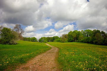 Spring summer background - rural road in green grass field