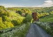 Country Road, Yorkshire