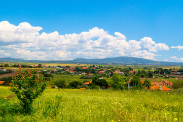 Panorama of the countryside Chalkidiki peninsula  with green fie