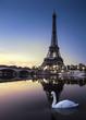 Tour Eiffel au Crépuscule avec Cygne Blanc