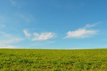 Prato con cielo azzurro e nuvole
