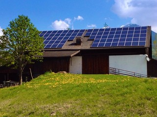 Farm with photovoltaic