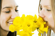 Two girls smell a bouquet a narcissus