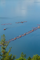 Fish farming the lake toba Indonesia