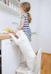 Little girl making meal in the kitchen. Cat stealing food.