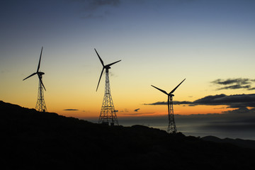 A group of three wind turbines at sunset in an eolic park