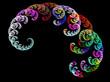Multicolor fractal flower on black background