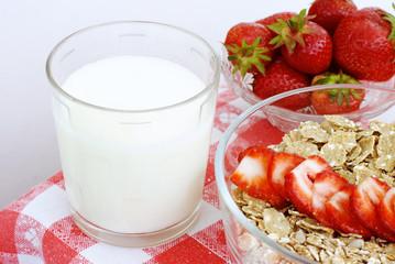 organic milk with cereals