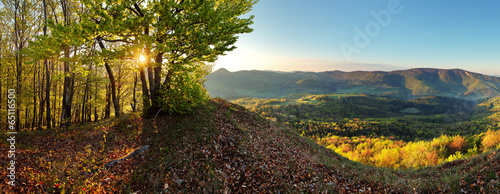Fotobehang Heuvel Forest - mountain panoramic view