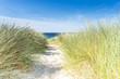 Leinwandbild Motiv Dune with beach grass close-up.