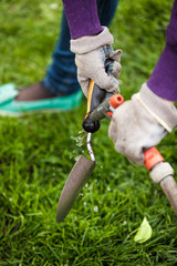 photo of gardener cleaning small garden shovel with water