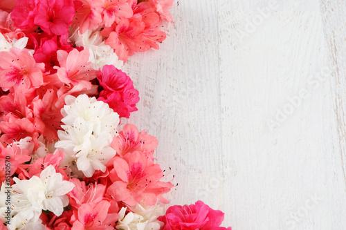 Fotobehang Azalea flowers