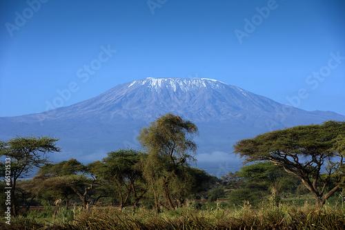 Fotobehang Overige Snow on top of Mount Kilimanjaro in Amboseli