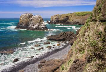 Yaquina Cove