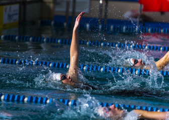 backstroke women race