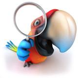 Fototapety Parrot