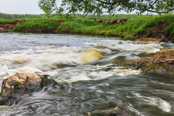 rapid flow of small river