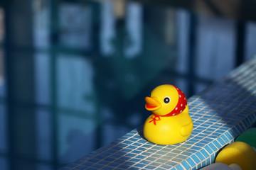 Резиновая желтая уточка возле бассейна