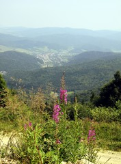 panoramic view at Krynica from Jaworzyna montain top