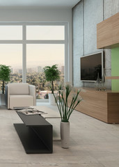 Modern apartment living room interior