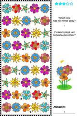 Visual puzzle: find the unique row that has no mirror copy