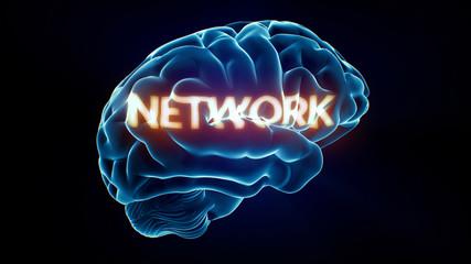 Network Xray Brain