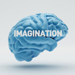 Imagination Brain
