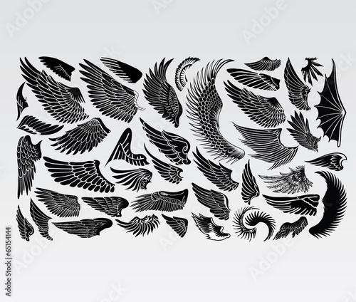 Wings Birds - 65154144