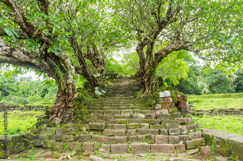 Papiers peints Ruine Ancient tree tunnel at Wat Phu ,Lao