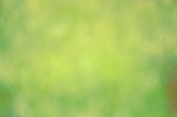 Hintergrund grün pastell natur 02