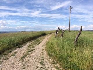 sentiero campagna toscana