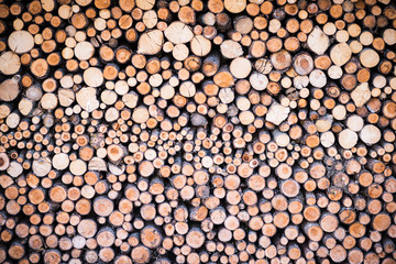 stack of round cutted firewood pieces as background texture