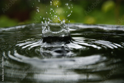 water splash © arris_